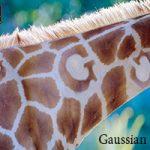 Gaussian 16 量子化學軟體